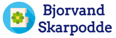 Logo for bjorvand-skarpodde.no